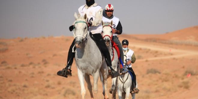 صورة عبدالله بن فهد يتوج البادي بكأس وزارة الرياضة الدولي للقدرة والتحمل