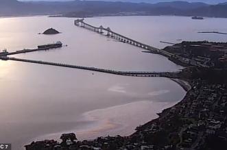 فيديو.. كارثة بيئية في خليج سان فرانسيسكو (2)