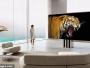 فيديو وصور.. كشف النقاب عن اول تلفاز قابل للطي في العالم