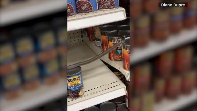فيديو صادم.. متسوقة تجد ثعباناً بين منتجات الطعام